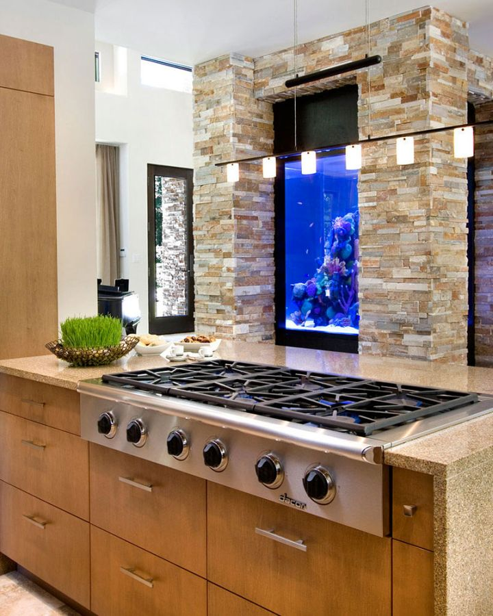 contemporary fish tank in the kitchen