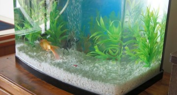 contemporary fish tank prefab