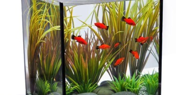 contemporary fish tank simple and small