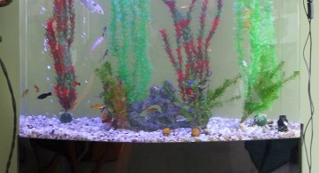 contemporary fish tank simple column