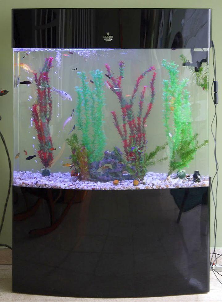 contemporary fish tank simple column