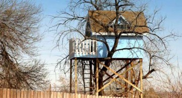 featured image of treehouse on stilts with blue walls