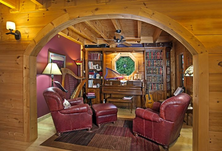 home music room with harp and guitar