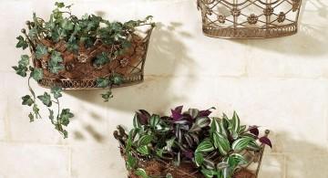 indoor wall hanging planter crown