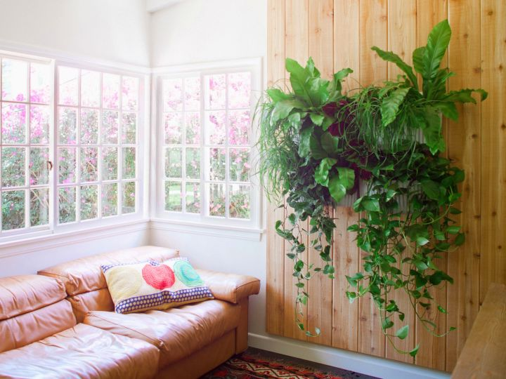 indoor wall hanging planter on wooden wall panel