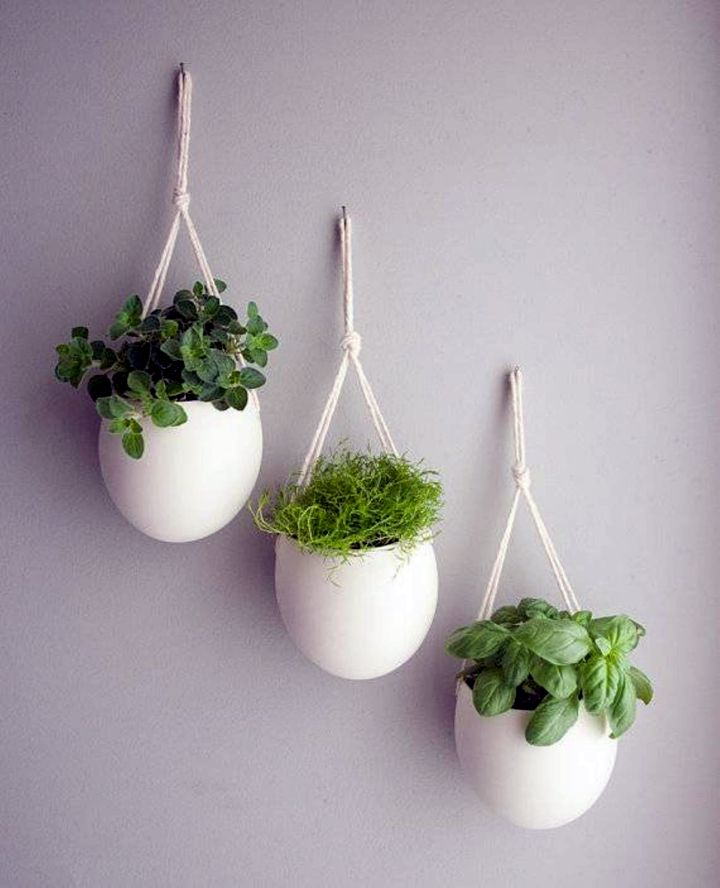 Indoor Wall Hanging Planter White Porcelaine. What Color Should I Paint My Kitchen. White Rustic Coffee Table. Home Themes. Done Rite Roofing. Window Treatments For Bay Windows. Lazy Boy Sectional Sofas. Wood Plus. Kent Construction