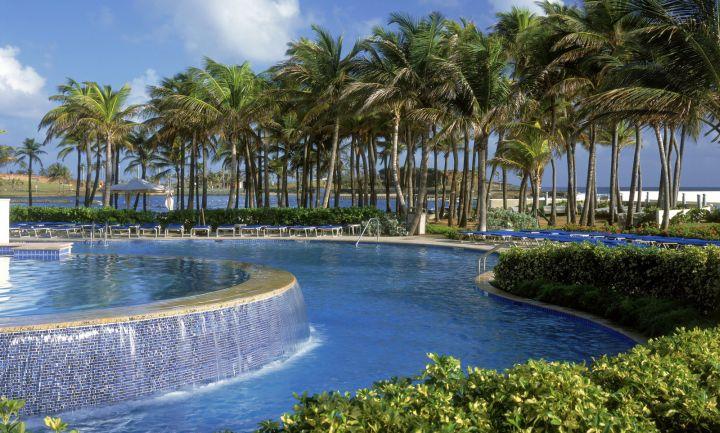 lush modern and round pool waterfall ideas