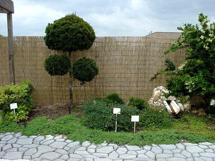 oriental garden design for small space