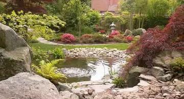 oriental garden design with red tree