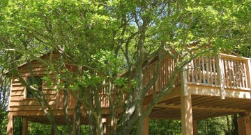 simple two treehouse on stilts