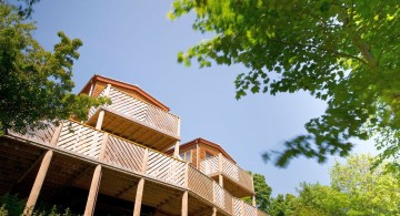 spacious treehouse on stilts