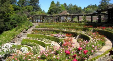 tierred terraced flower garden