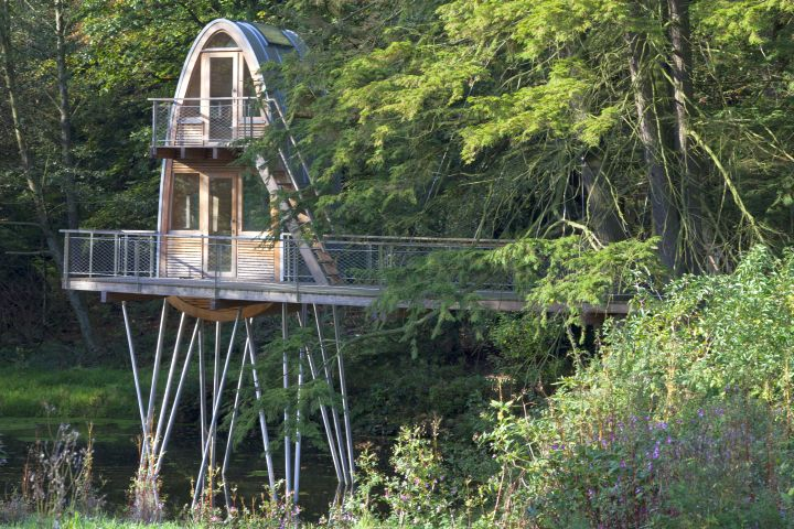 treehouse on stilts above the river