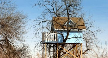 treehouse on stilts with blue walls