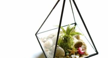 air plant terrarium ideas in pyramid jar