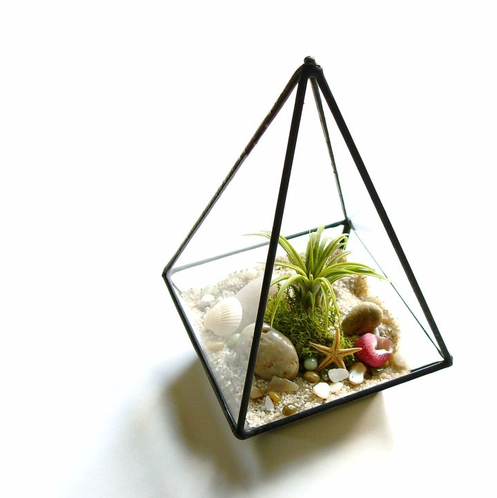 air plant terrarium ideas in pyramid jar