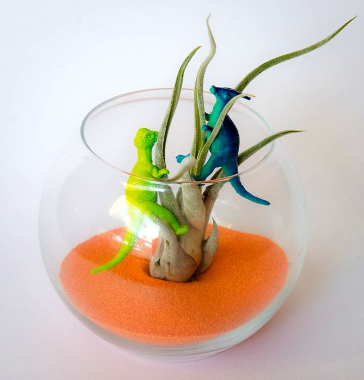 air plant terrarium ideas with dinosaur figurines