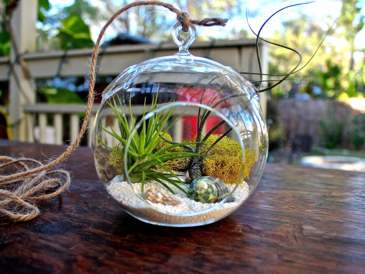 Minimalist Winter Wonderland Themed Air Plant Terrarium Ideas