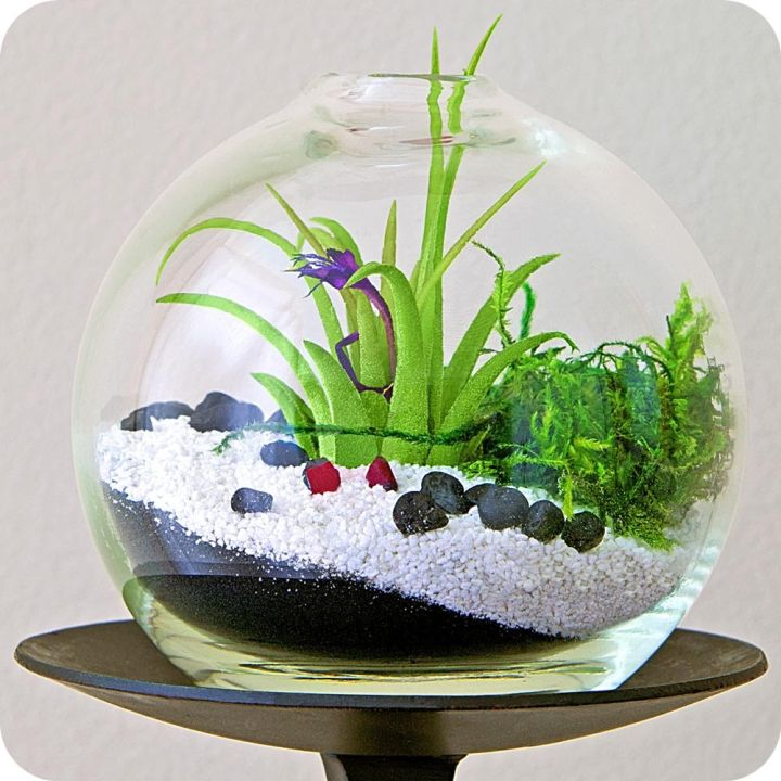 forest in winter themed air plant terrarium ideas