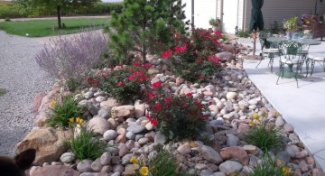 gardening with rocks ideas for backyard or poolside