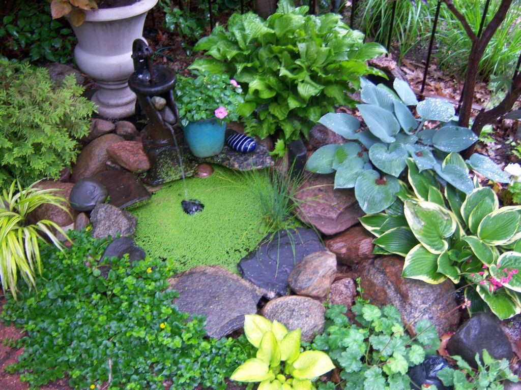 20 Beautiful Gardening with Rocks Design Ideas on Small Garden Ideas With Rocks id=41409