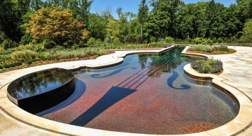 violin shaped with small jacuzzi pool with spa designs
