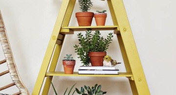 Display ladder for indoor plants