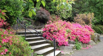 Garden stairs with iron handrail