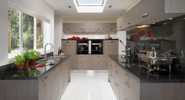 contemporary minimalist Grey Kitchen Ideas