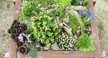small rock garden designs with wooden box