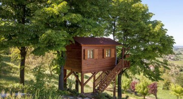 basic idea treehouse on stilts