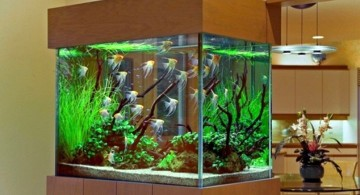 contemporary fish tank wall partition