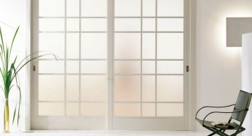 half opaque modern glass door