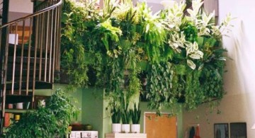 indoor wall hanging planter above the kitchen