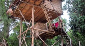 large treehouse on stilts