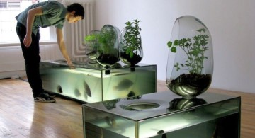 minimalist contemporary fish tank for eels
