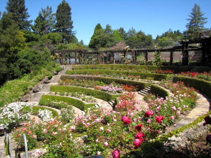 17 Fantastic Terraced Flower Garden Ideas on Terraced Backyard Landscaping Design id=84075