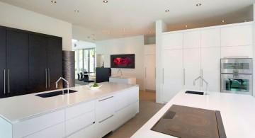 ultramodern lake house kitchen island