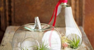 a pair of pumpkin jars air plant terrarium ideas