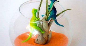 air plant terrarium ideas with dinosaur figurines