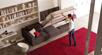 murphy bed couch ideas mounted to bookshelf and red rug flooring